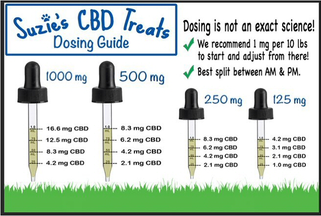 How much CBD to give your pet